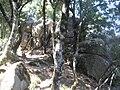 Pietre neolitiche sito B.jpg