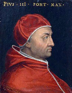 Pope Pius III 16th-century Catholic pope