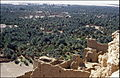 Plantaža datulja u El Golei 25. travnja. 1985..jpg