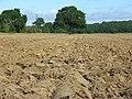 Ploughed farmland, Hurst - geograph.org.uk - 546431.jpg
