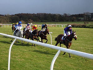 point to point steeplechase wikipedia
