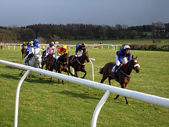 Point-to-point (steeplechase) - A point to point race