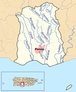 Anón River River of Puerto Rico