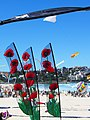 Poppies - Festival of the Winds 2012.jpg
