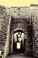 Porte Cers 1.jpg