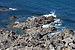 Porto do Son 2011-05-27. Beira do mar de Arousa.jpg