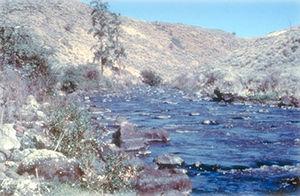 Powder River (Oregon) - The Wild and Scenic Powder River