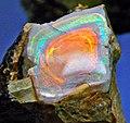 Precious opal (Spencer Opal Mine, Spencer, Idaho, USA) (29284532634).jpg