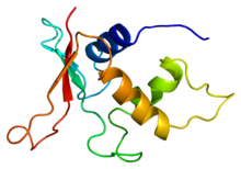 Protein IRF2 PDB 1irf.png