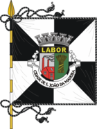 Flag of Sao Joao da Madeira