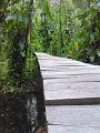Puente sobre el ojo de agua del parque ecoturistico ojo de agua el cardon.jpg