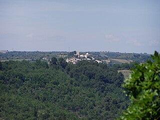 Puimichel Commune in Provence-Alpes-Côte dAzur, France