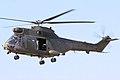 Puma - RIAT 2006 (2455476126).jpg