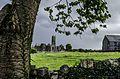 Quin Abbey, Quin, Co Clare, DSC 4331.jpg