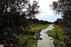 Río Tamuja.jpg
