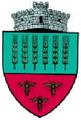 ROU SV Granicesti CoA.png