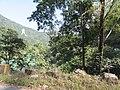 Ravangla, Sikkim by Masum Ibn Musa (186).jpg
