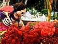 Recogiendo Flores.JPG