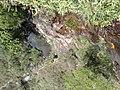 Retiro das Pedras - Cachoeira - BH - panoramio.jpg