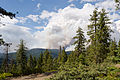 Rim Fire Yosemite August 2013 003.jpg