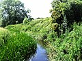 River Colne between Fordstreet - West Bergholt - geograph.org.uk - 472213.jpg