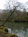 River Derwent - geograph.org.uk - 1120781.jpg