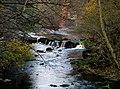 River Derwent - geograph.org.uk - 602127.jpg