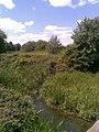River Nene - geograph.org.uk - 1883170.jpg