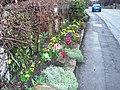 Road-side flowers in Lazenby village - geograph.org.uk - 1779882.jpg