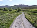 Road at Bunnakilly - geograph.org.uk - 1380263.jpg