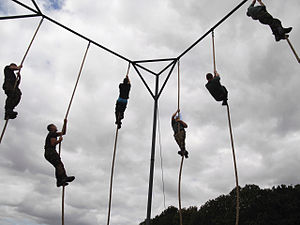All Arms Commando Course - Rope climbing