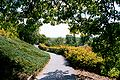 Rochester NY Highland Park 2001.jpeg