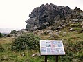 Rocks on Beacon Hill - geograph.org.uk - 946874.jpg