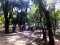 Roma Condesa parks for Wikimania 03.jpg