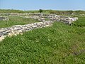 Romania-Histria (ancient city) 2008zd.jpg