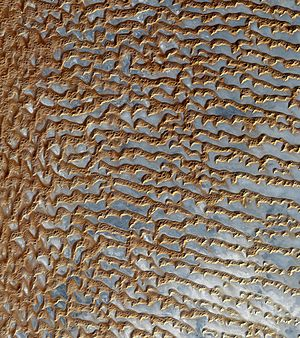 Image of sand dunes in Rub' al Khali, Arabia's...