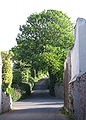 Rue de la Falaise La Trinneté Jèrri.jpg