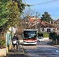 Rue du Figuier (Miribel) - bus Colibri et postier à vélo.jpg