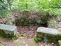 Ruine Hirschstein xy 4.JPG