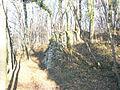 Ruine Röthilnstein am 20.Dez. 019.jpg