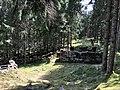 Ruines marcaireries haut de loge.jpg