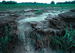 Topsoil - Surface runoff, a type of nonpoint source pollution, from a farm field in Iowa during a rain storm.  Topsoil as well as farm fertilizers and other potential pollutants run off unprotected farm fields when heavy rains occur.