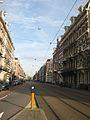 Ruyschstraat.jpg