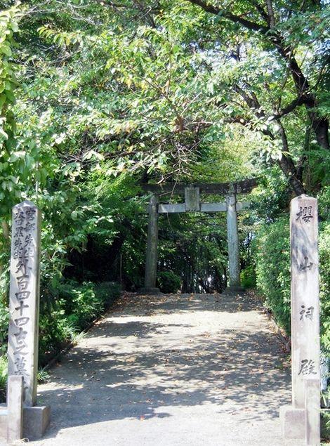 桜山神社 (熊本市)