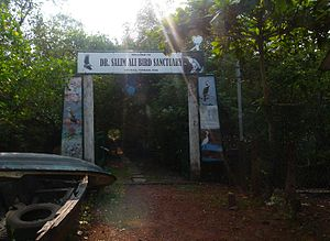 Salim Ali Bird Sanctuary - Image: Salim Ali Sanctuary