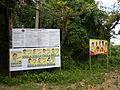 SanPascual,Batangasjf9331 19.JPG