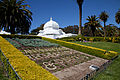 San Francisco Conservatory of Flowers-8.jpg