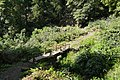Sanguinho valley footbridge. - panoramio.jpg