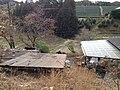 Sankaiseki Dōsenbō, Minamiyamashiro-mura, Sōraku-gun, Kyōto-fu 619-1401, Japan - panoramio (3).jpg