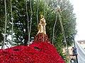 Santa rosalia rose.jpg